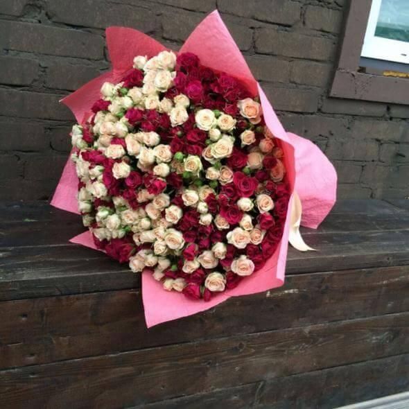 101 розово-кремовая кустовая роза