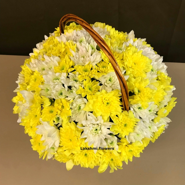 15 хризантем белых и желтых в корзине
