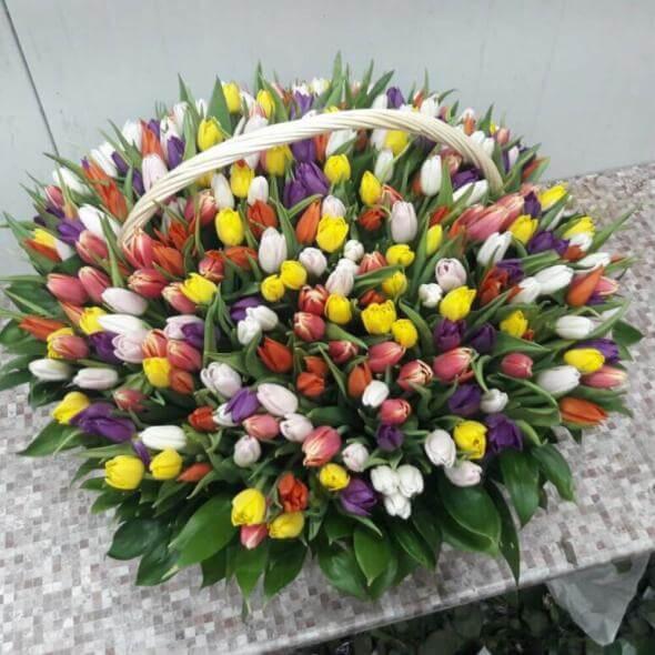 301 тюльпан микс в корзине