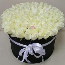 """101 роза """"PROUD"""" в черной шляпной коробке"""