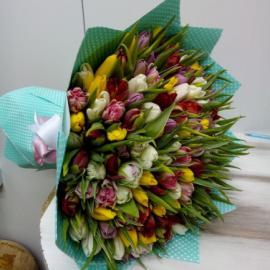 101 пионовидный тюльпан микс