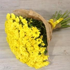 Букет из 25 желтых хризантем