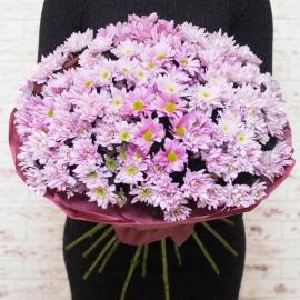 Букет из 25 розовых хризантем
