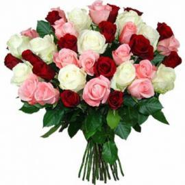 Розы микс белые, красные, розовые