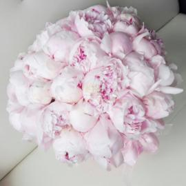 35 розовых пионов в шляпной коробке