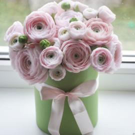Коробка нежно розовых ранункулюсов