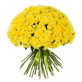 Букет из 51 желтой хризантемы
