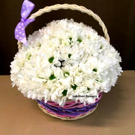 Хризантемы кустовые белые в корзине