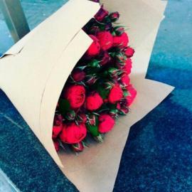 51 красная пионовидная роза «Red Piano»