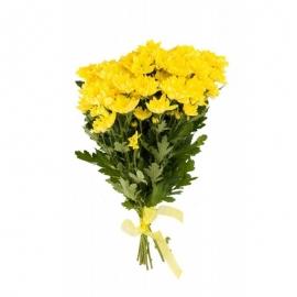 Букет из 9 желтых хризантем