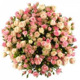 51 кустовая роза кремовые и розовые