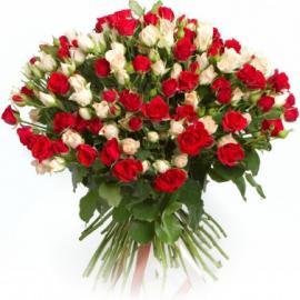 Букет из 51 белой и красной кустовой розы
