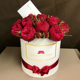 """19 пионовидных роз """"Red Piano"""" в коробке"""