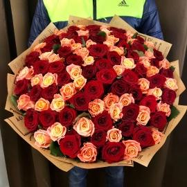 101 роза персиковая и красная микс
