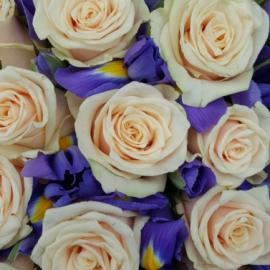 Букет кремовых роз с ирисом