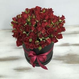 Красная кустовая роза в шляпной коробке