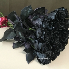 15 черных роз