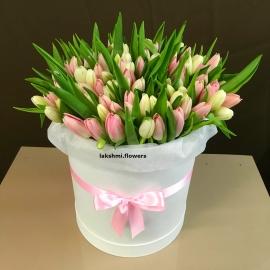 101 розовый и белый тюльпан микс в коробке