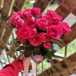 9 крупных кустовых малиновых роз Колумбия