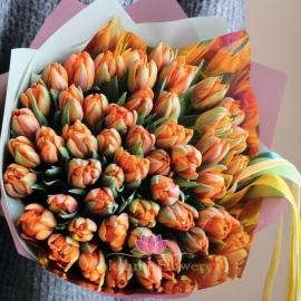 51 оранжевый пионовидный тюльпан
