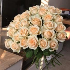 25 персиковых роз