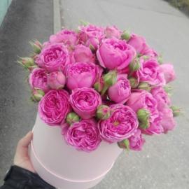 Пионовидные розы «Мисти Баблс» в шляпной коробке